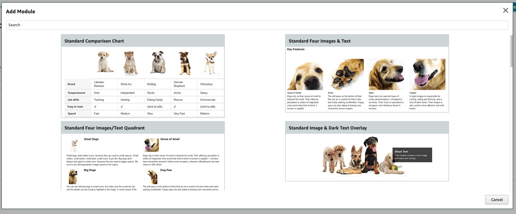Module examples for A+ Content